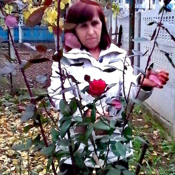 Дарья Набиева