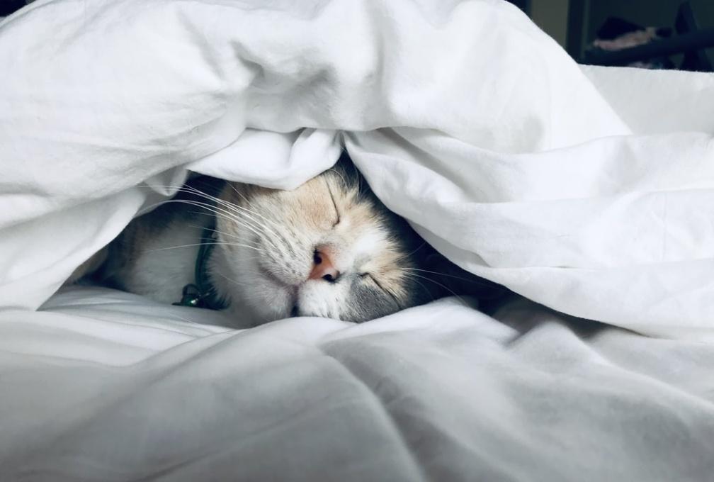 5 способов быстро заснуть
