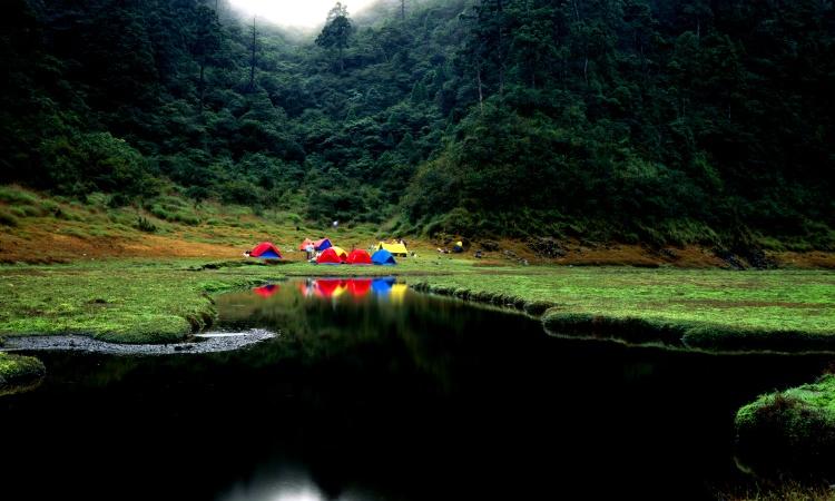 Природа и активный отдых